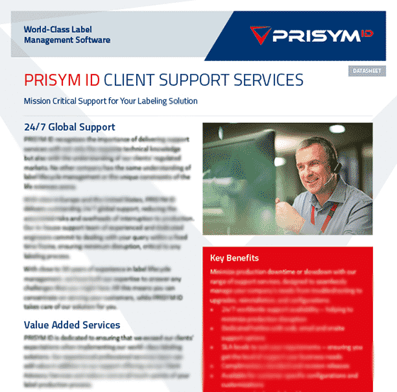 Client Support Services